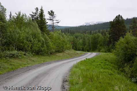 Grusvägen mellan Ammarnäs och Höbäcken
