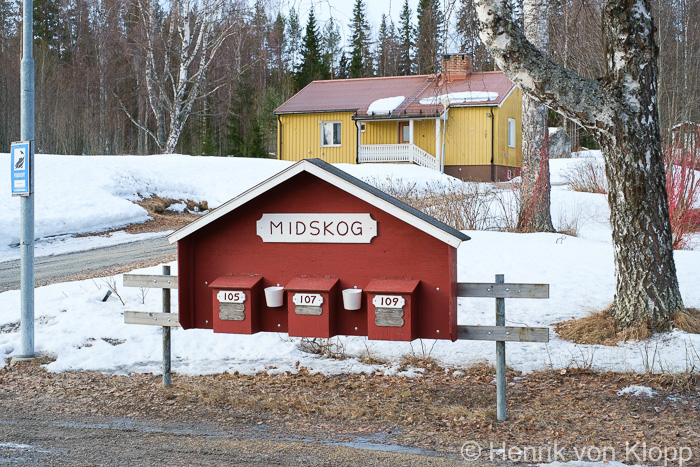 midskog_blog-5