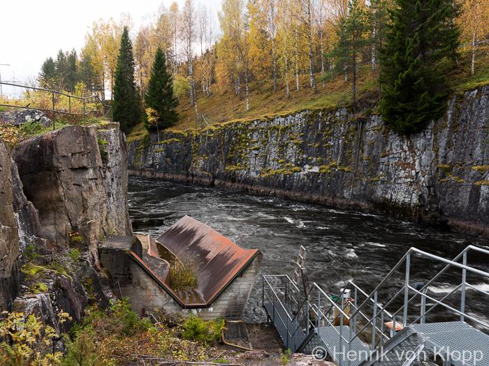 langbjorn_site-1